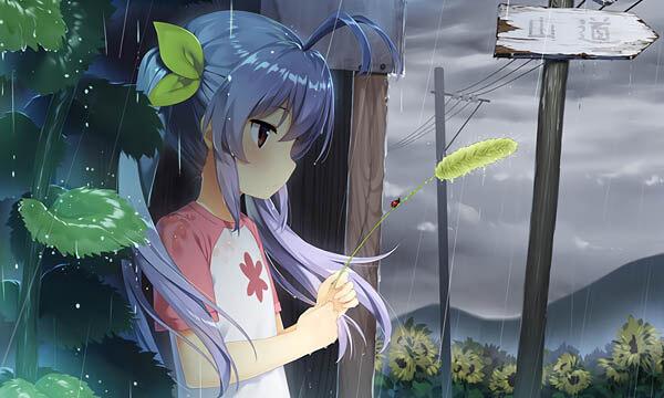 台风又来了